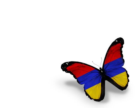 Armenian flag butterfly, isolated on white background photo