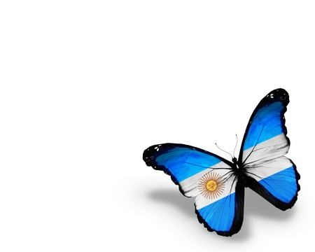 Argentine flag butterfly, isolated on white background Stock Photo