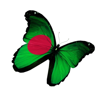 Bangladesh flag butterfly flying, isolated on white background photo