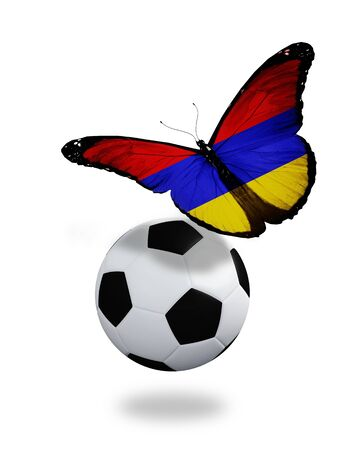 ball like: Concept - butterfly with Armenian flag flying near the ball, like football team playing   Stock Photo