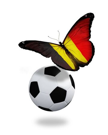 ball like: Concept - butterfly with Belgian flag flying near the ball, like football team playing