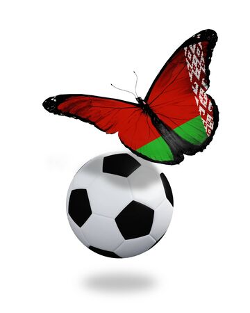 ball like: Concept - butterfly with Belarussian flag flying near the ball, like football team playing   Stock Photo