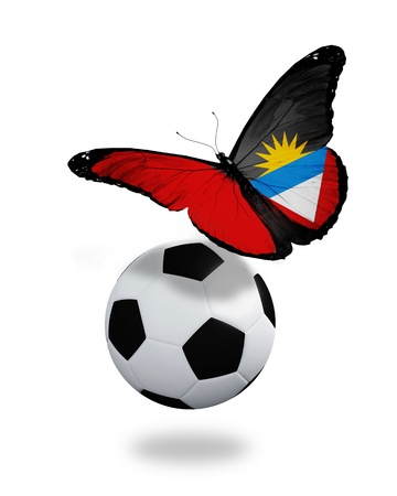 ball like: Concept - butterfly with Antigua and Barbuda flag flying near the ball, like football team playing