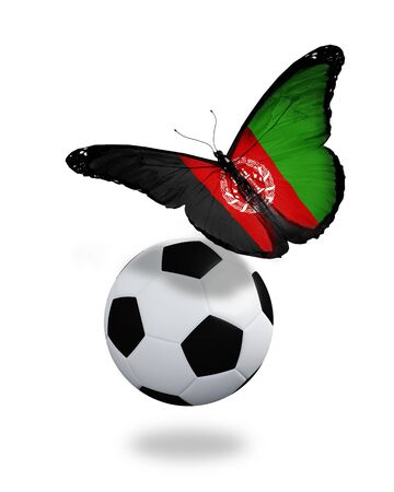 Concept - butterfly with Afghani flag flying near the ball, like football team playing   photo