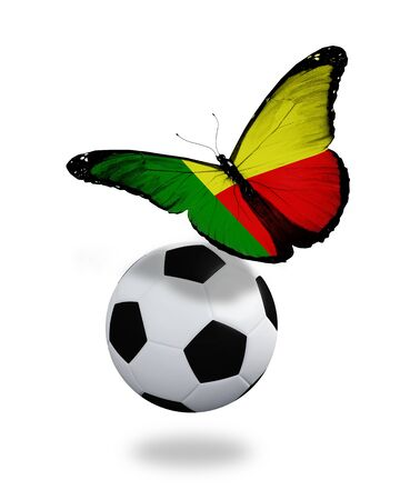 Concept - butterfly with Benin flag flying near the ball, like football team playing   Stock Photo