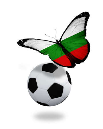 ball like: Concept - butterfly with Bulgarian flag flying near the ball, like football team playing