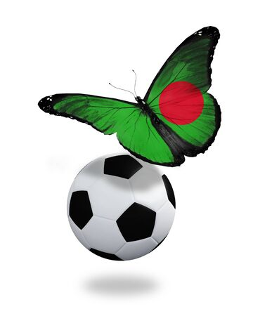 Concept - butterfly with Bangladesh flag flying near the ball, like football team playing   photo