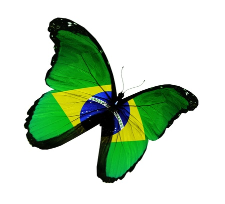 brazil country: Brazilian flag butterfly flying, isolated on white background