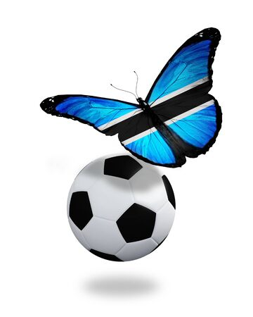 ball like: Concept - butterfly with Botswana flag flying near the ball, like football team playing   Stock Photo