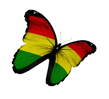 Bolivian flag butterfly flying, isolated on white background photo