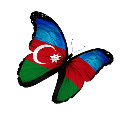 azerbaijan: Azerbaijani flag butterfly flying  Stock Photo