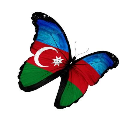 azerbaijani: Azerbaijani flag butterfly flying  Stock Photo