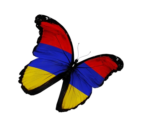 armenia: Armenian flag butterfly flying