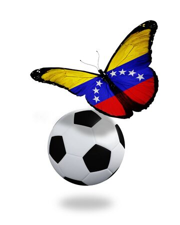 Concept - butterfly with Venezuelan flag flying near the ball, like football team playing   photo