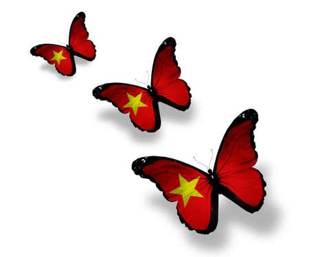 Three Vietnamese flag butterflies, isolated on white photo
