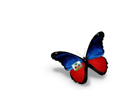 Haiti flag butterfly  photo