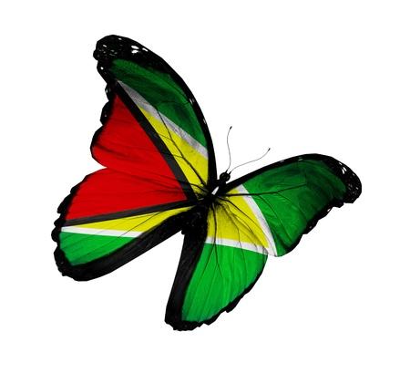 Guyana: Guyana flag butterfly