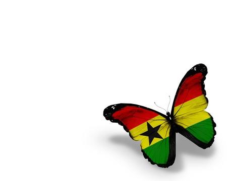 Ghana flag butterfly  photo