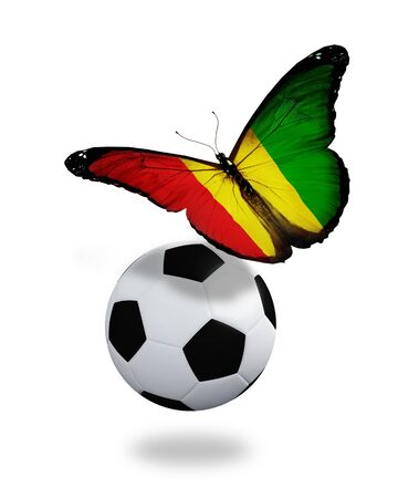 ball like: Concept - butterfly with Guinean flag flying near the ball, like football team playing   Stock Photo