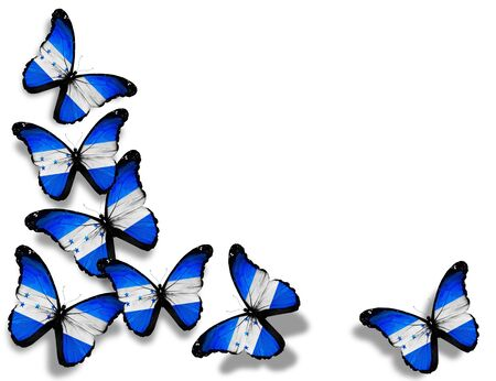 honduras: Honduras flag butterflies, isolated on white background Stock Photo