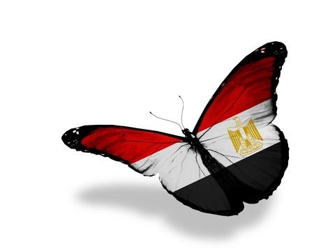 �rabe: Bandera egipcia mariposa volando, aislado sobre fondo blanco