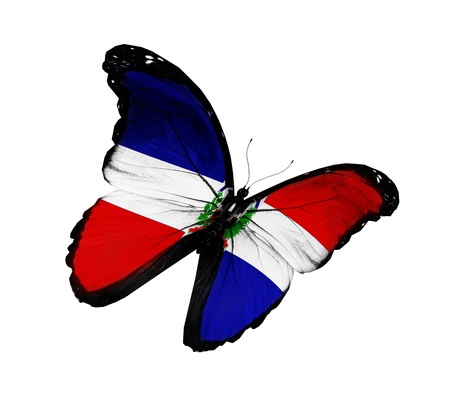 Dominican Republic flag butterfly flying  photo