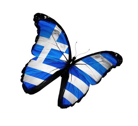 Greek flag butterfly flying