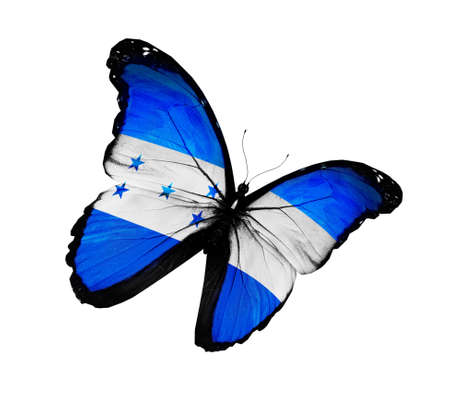 Honduras flag butterfly flying, isolated on white background photo