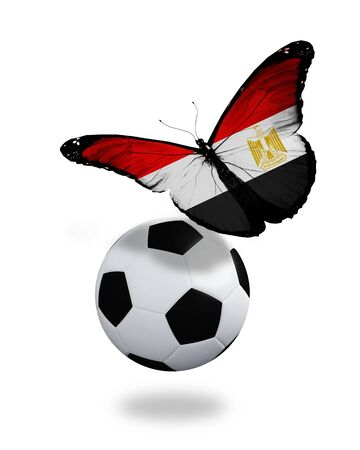 penalty flag: Concept - butterfly with Egyptian flag flying near the ball, like football team playing   Stock Photo