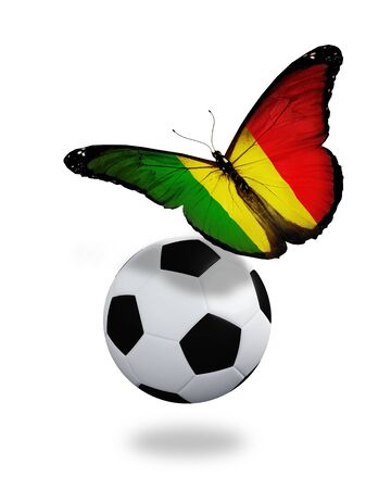 ball like: Concept - butterfly with Mali flag flying near the ball, like football team playing