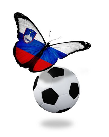 ball like: Concept - butterfly with Slovenian flag flying near the ball, like football team playing   Stock Photo