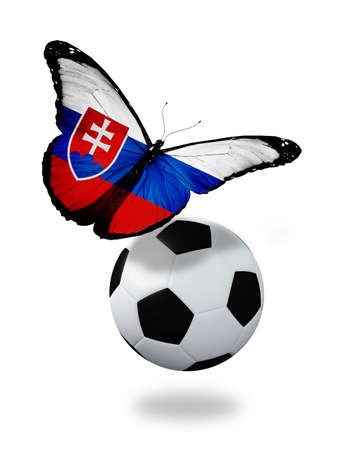 ball like: Concept - butterfly with Slovakian flag flying near the ball, like football team playing   Stock Photo
