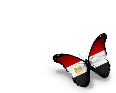 egypt flag: Bandera egipcia mariposa, aislado en fondo blanco