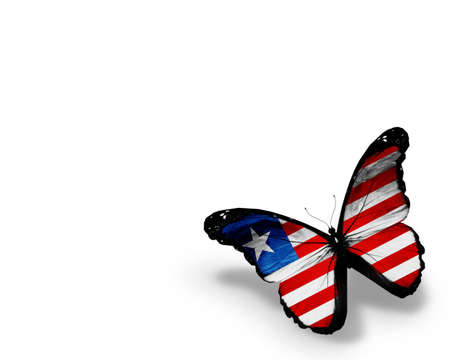 liberia: Liberia flag butterfly, isolated on white background Stock Photo