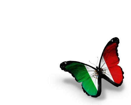 United Mexican States flag butterfly, isolated on white background Фото со стока