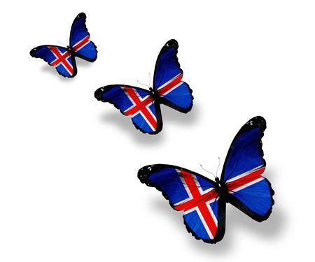 icelandic flag: Tres mariposas bandera de Islandia, aislados en blanco Foto de archivo