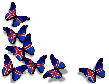 icelandic flag: Mariposas islandeses bandera, aislado sobre fondo blanco