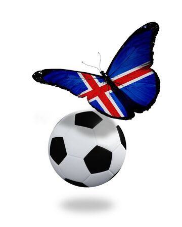 ball like: Concept - butterfly with Icelandic flag flying near the ball, like football team playing