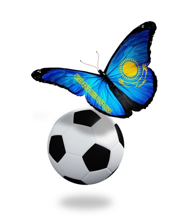 Concept - butterfly with Kazakhstan flag flying near the ball, like football team playing