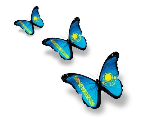 Three Kazakhstan flag butterflies, isolated on white photo