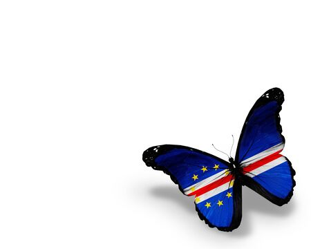cape verde: Cape Verde flag butterfly, isolated on white background Stock Photo