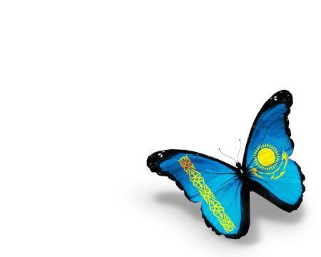 Kazakhstani flag butterfly, isolated on white background photo