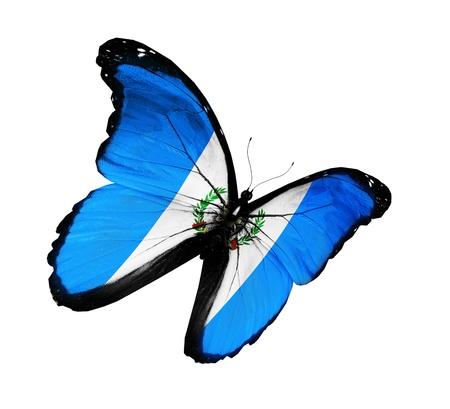 guatemala: Guatemala flag butterfly flying, isolated on white background