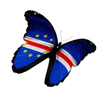 cape verde flag: Cape Verde flag butterfly flying, isolated on white background