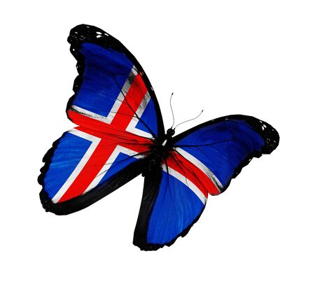 icelandic flag: Islandia bandera mariposa volando, aislado sobre fondo blanco