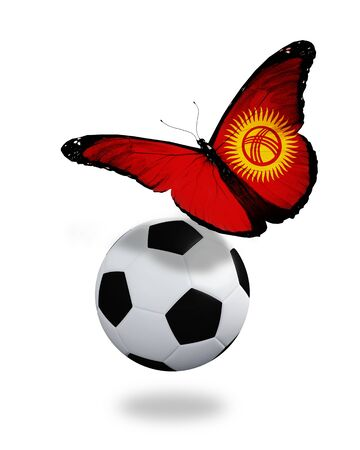 Concept - butterfly with Kyrgyz flag flying near the ball, like football team playing   photo