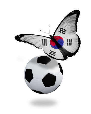 ball like: Concept - butterfly with South Korea flag flying near the ball, like football team playing