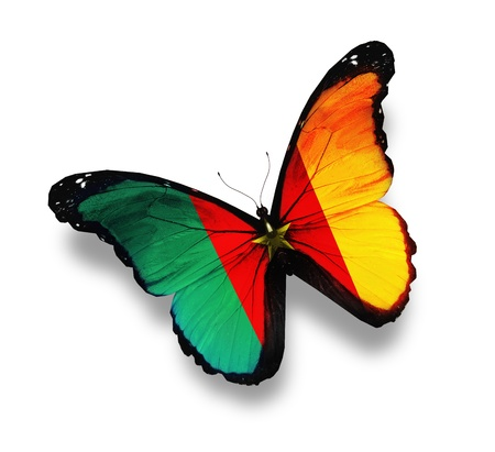 cameroon: Cameroon flag butterfly, isolated on white