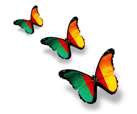 Three Cameroon flag butterflies, isolated on white Stock Photo - 14794171