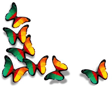 Cameroon flag butterflies, isolated on white background Stock Photo - 14794178